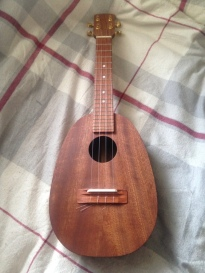 The finished Ukulele!